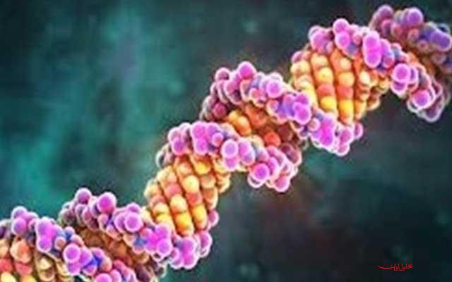 دانلود پاورپوینت DNA موتورها